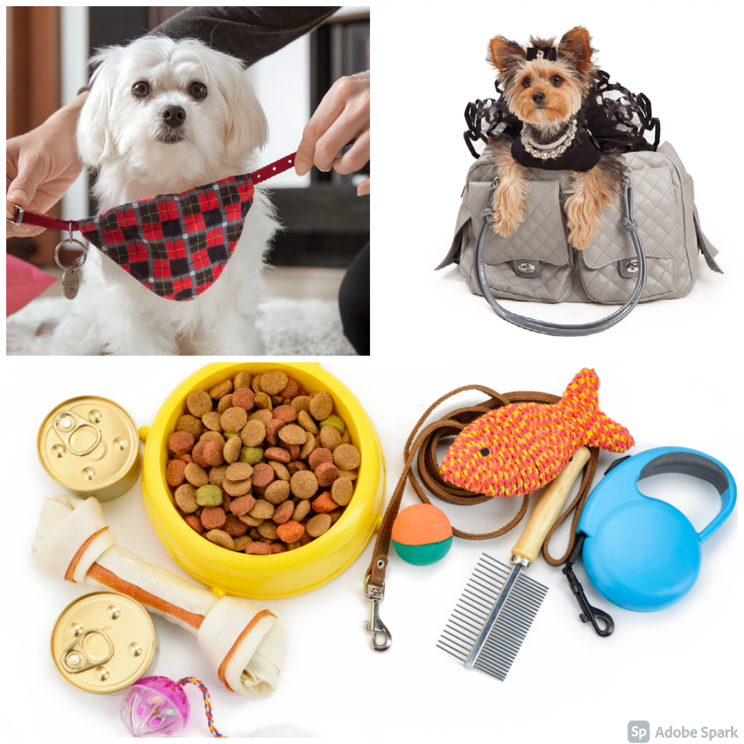 7 Luxurious Pet Accessories, Cuz They Enjoy Nice Things Too!